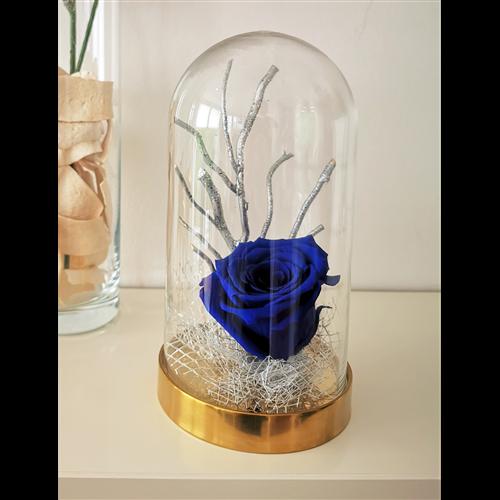 Plava dehidrirana ruža u staklenom zvonu