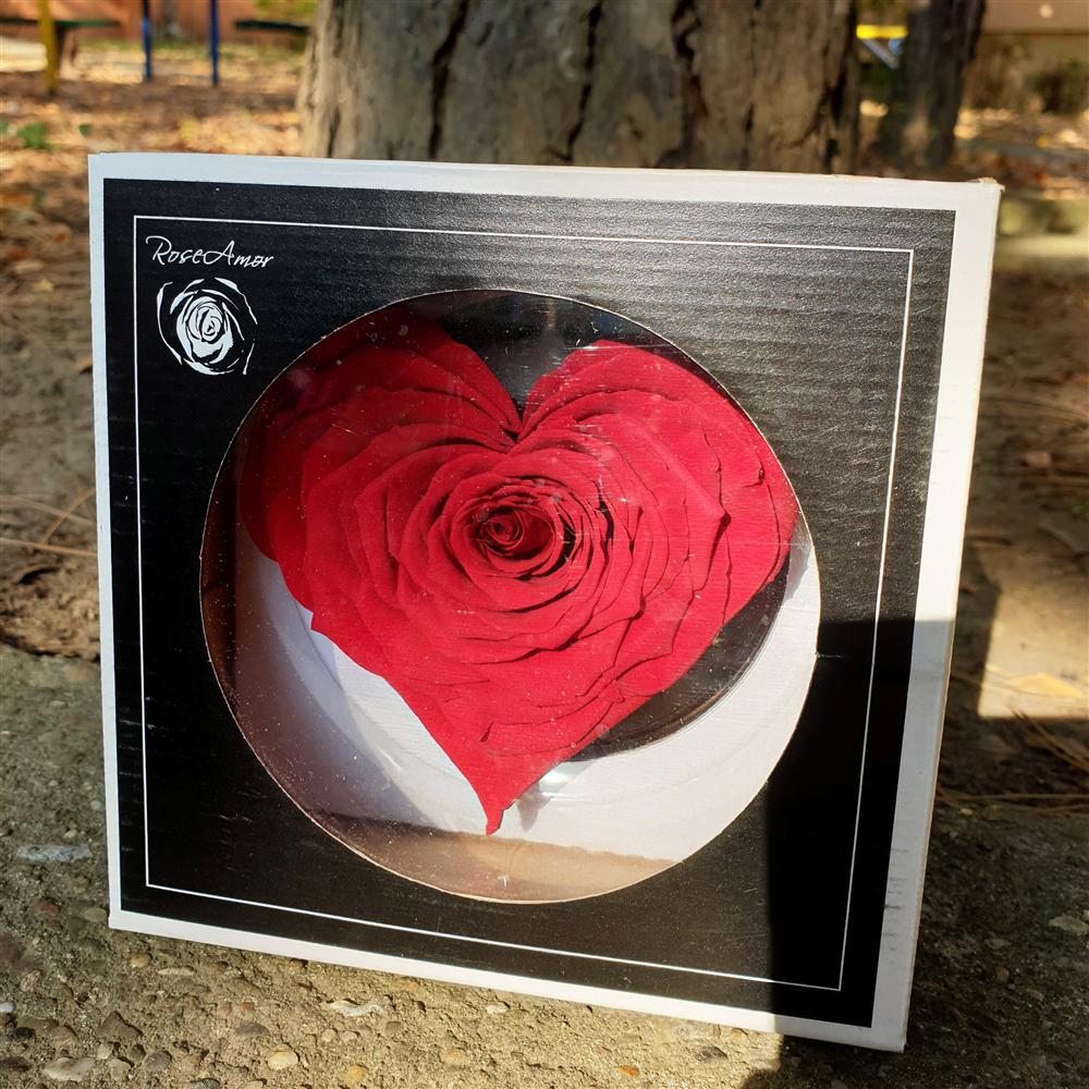 Crvena dehidrirana ruža srce