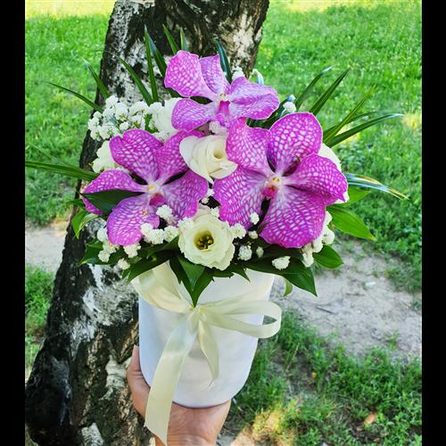 Flower box 002