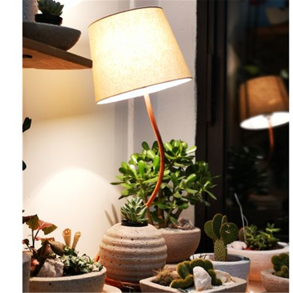 Lampa Bombica