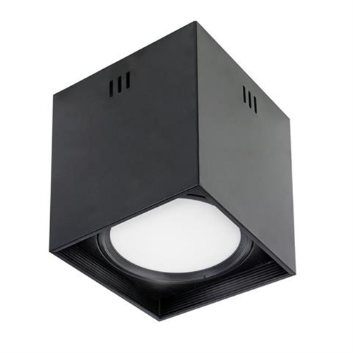 Plafonska lampa 8076