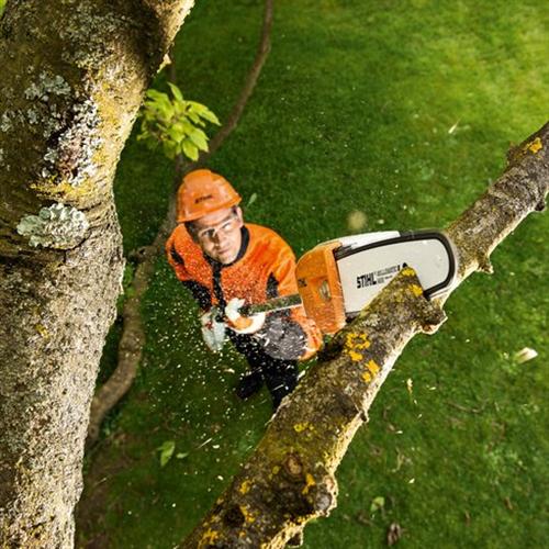Rezači visokih grana